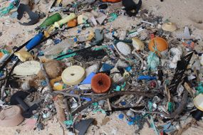 garbage washed up on henderson island