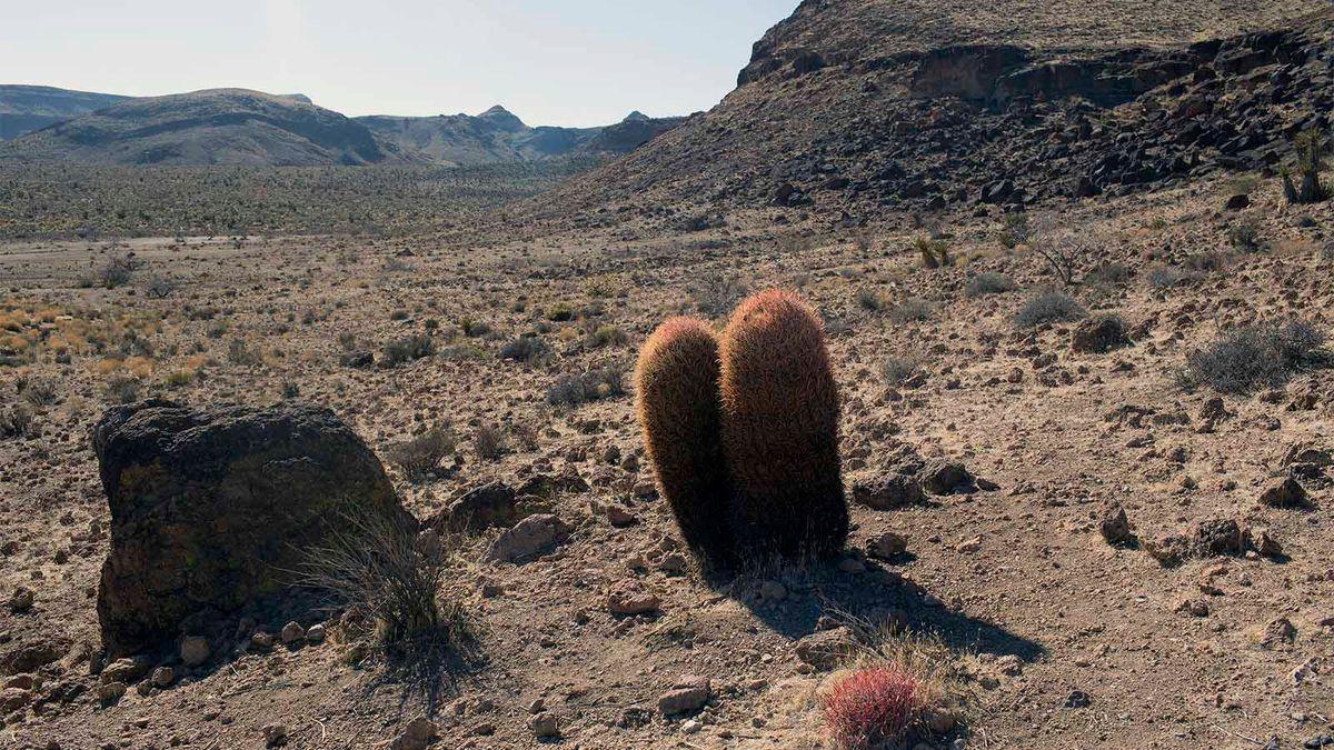5 de los desiertos más altos de la Tierra