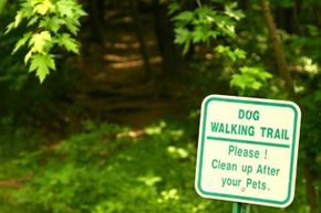 It's fair to say that most people don't want to step in poop.
