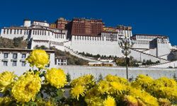 Some controversial sites, such as Potala Palace, were once considered hallowed ground. See more pictures of famous landmarks.