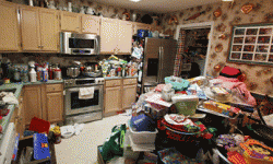 Offer hoarders alternatives to suggested treatment plans.