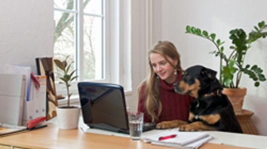 5 Must-haves for a Home Office
