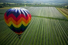 Looking for a unique way to tour wine country? Get a bird's-eye view from a hot air balloon!