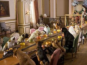 """A few of the residents in """"Hotel for Dogs."""""""