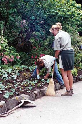 Plant some flowers and clean up planters to enhance your home's curb appeal.