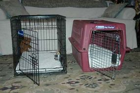 A collapsable wire crate and an enclosed plastic crate.