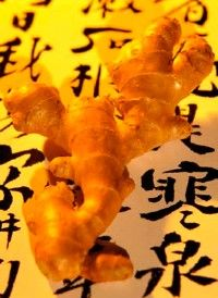 Fresh ginger is used to treat the common cold with diaphoretic or sweating therapy.