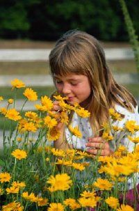 Exploring nature together can be a good way to introduce your child to the concept of death.