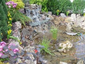 Backyard pond waterfall