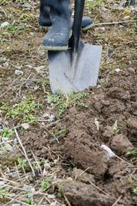 To give your rock garden a proper foundation, first dig out a plot so that you can put down a drainage layer.