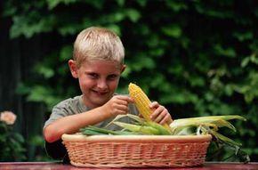 Hyperactive children are often unusually intelligent.