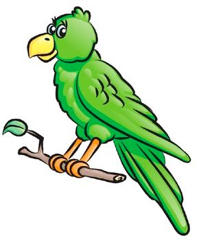 Bird Image Gallery Learn how to draw a parrot on a perch in five simple steps. These illustrated directions guide you through each step of this parrot drawing. See more pictures of birds.