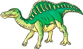 Dinosaur Image Gallery The bumpy, ridged back and strong legs of the Ouranosaurus make it a cool dinosaur. See more dinosaur pictures.