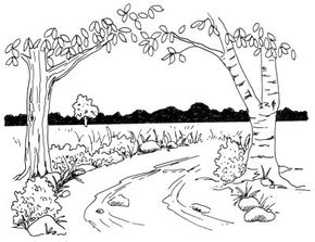 Draw a rural lane filled with trees, flowers, and a variety of plants in this heartwarming scene. Learn how to draw it in just five steps.