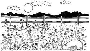 Learn how to draw this field of flowers landscape.