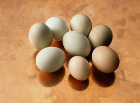 Taking the proper precautions when handling and cooking eggs is important for avoiding illness.