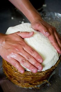 A cheese maker presses the salted curds in a basket to remove any excess whey.