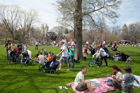 Is the local park a perfect place for a family reunion?