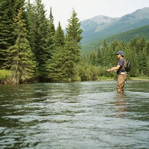 Fishing Image Gallery Fly-fishing lends itself to easier hook removal and a successful catch and release. See more pictures of fishing.
