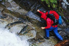 Most backpacks have a water resistant interior coating, but water resistant does not mean water proof.