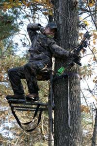A tree stand can be a useful tool for bow hunters.