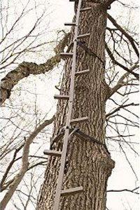 Guide Gear's 20-foot climbing stick
