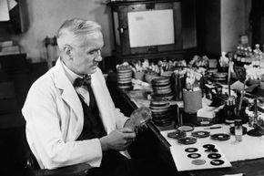 Sir Alexander Fleming, a bacteriologist, discovered penicillin quite by chance in 1928.