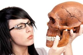 What answers can we find in a skull?