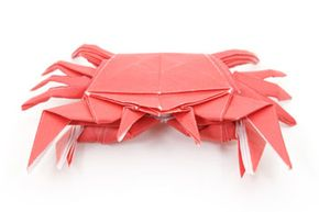 Animals are a recurring theme in origami models. Frogs and cranes are especially popular.