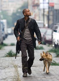 """Will Smith stars as Robert Neville in """"I Am Legend."""" See more movie images."""