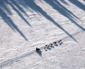 The Iditarod defies imagination: a 1,131-mile (1,821-kilometer) dog sled race through desolate tundra, dense forest, snow-swept mountains and the frigid Alaskan coast.