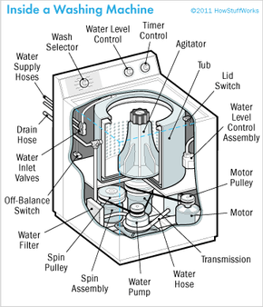 Ever wonder what the guts of a washing machine look like? A washer has a tub and an agitator; various cycles control the water temperature.