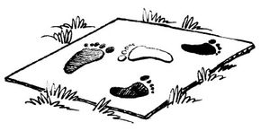 Play the Footprint I.D. Game.