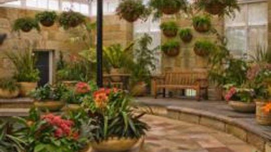 Indoor Gardens Pictures