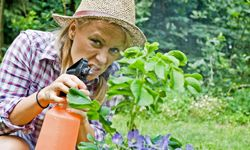 If you don't want chemicals in your body, don't spray them in your garden.