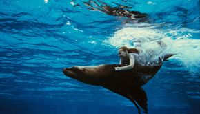That's really Abigail Breslin riding that sea lion.