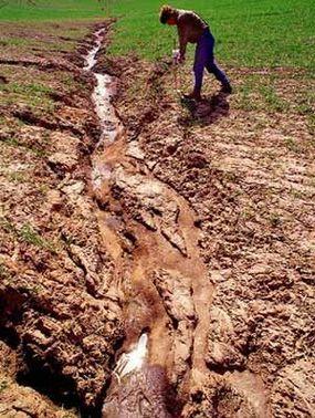 Severe soil erosion in a wheat field near Washington State University.