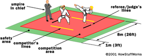 A typical sparring ring