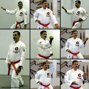Rob Olevsky, the master instructor at Karate International of Raleigh, demonstrates common defensive stances.