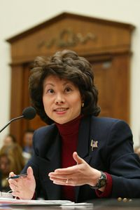 U.S. Secretary of Labor Elaine Chao listens to questions as she testifies February 6, 2002 during a hearing on the Enron collapse.