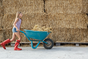 Farmers can save quite a bit of money by paying their kids for the work they'd already be doing around the farm.