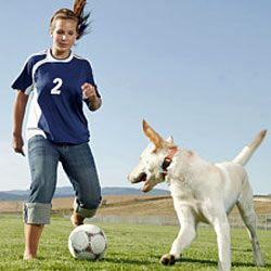 Your kids and dog will have a blast playing soccer together.
