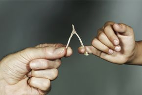 """Wishbones may be the origin of the term """"getting your lucky break."""" Who knew?"""