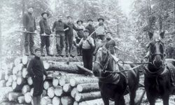 This disease was first identified in the late 1800s among an isolated group of French Canadian lumberjacks.
