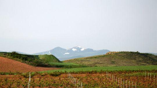 Ultimate Guide to the La Rioja Wine Region
