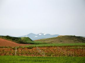 Spain's La Rioja wine region, which is named for two rivers, delivers many fine wines. See our collection of wine pictures.