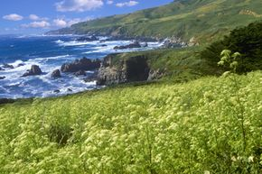 A shot of the Big Sur coastline in California. The Nature Conservancy has protected part of this area through a conservation land trust so future generations can enjoy it.