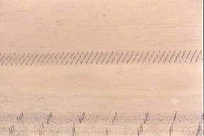 Landmines create the dotted lines through this desert scene.