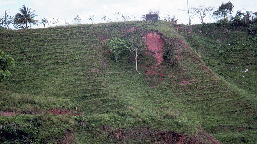 deforestation landslide