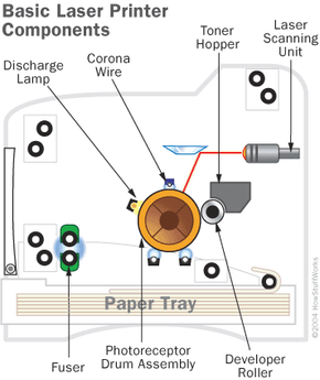 The basic components of a laser printer